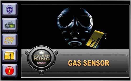 gas sensor golden kind